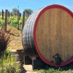 Sorry Australia, Americans Prefer Pricier New Zealand Wines